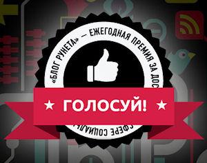 БЛОГ РУНЕТА - 2013
