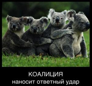 КОАЛИЦИЯ БЛОГЕРОВ КАЗАХСТАНА